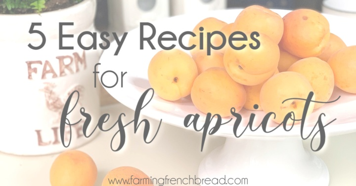 5 Easy Recipes for FreshApricots
